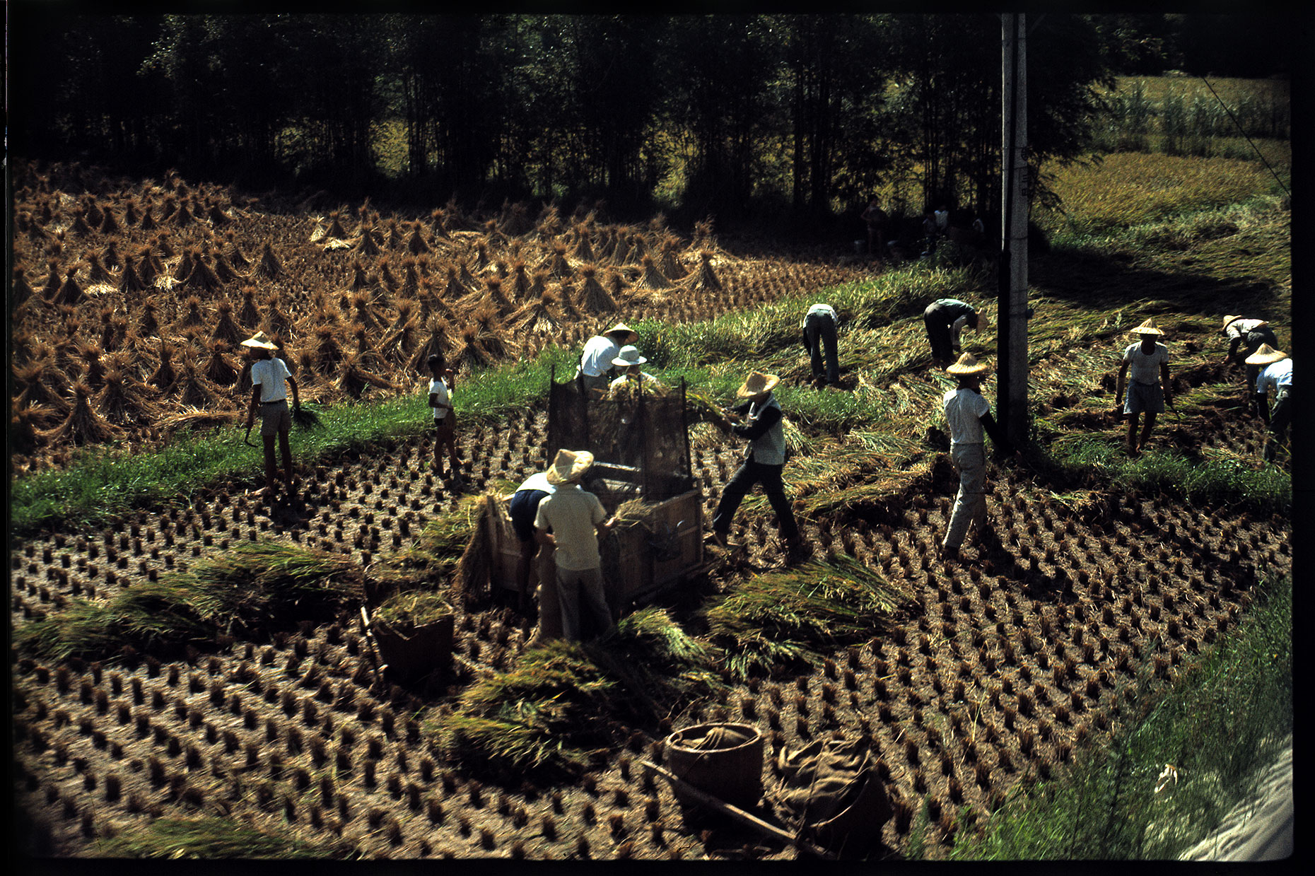 101-men-working-in-field