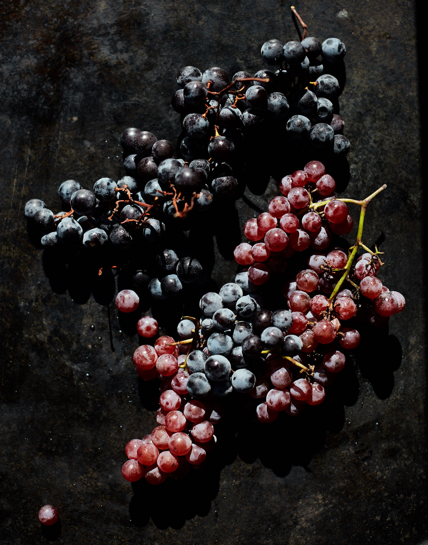 20161019_EyeSwoon_S120_FALL_Grapes_0066