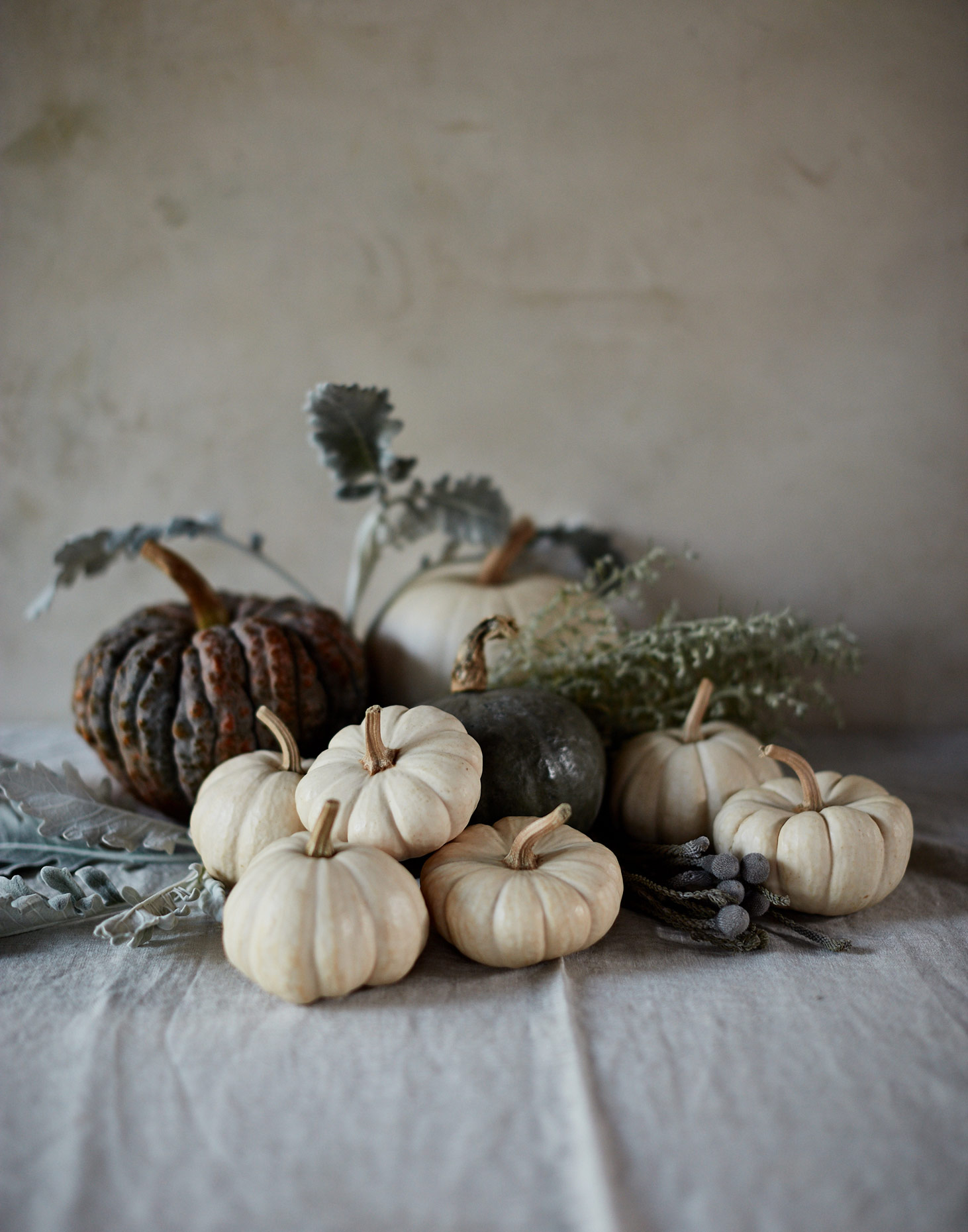 20161019_EyeSwoon_S130_FALL_MiniPumpkinCluster_0415